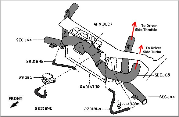 ninja fuel and vacuum lines diagram  ninja  free engine